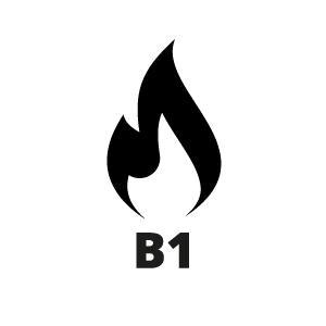 Cerificaat B1