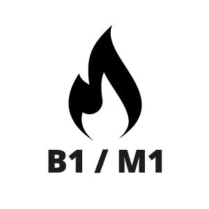 Cerificaat B1/M1